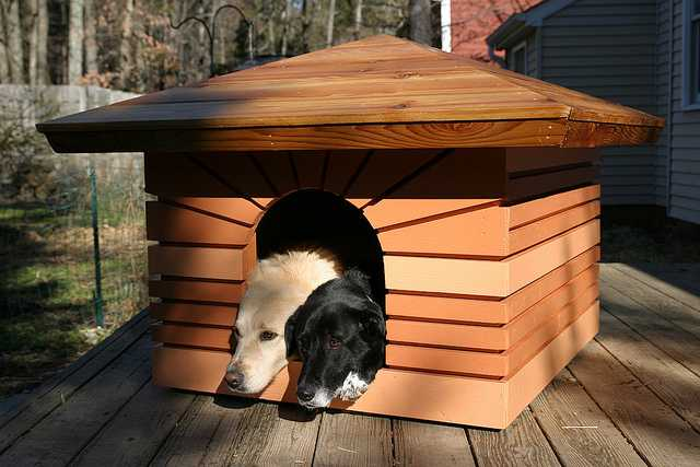 Dog house inspired by Frank Lloyd Wright's Heurtley House