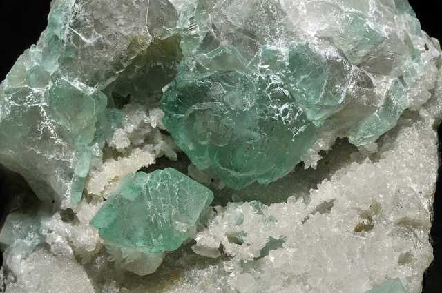 How Is Fluorine Used In Nature