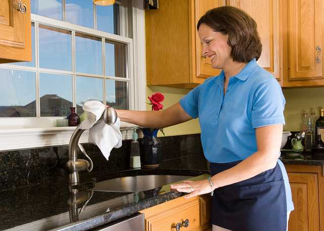 Cheerful Maid Polishing Kitchen Sink Faucet