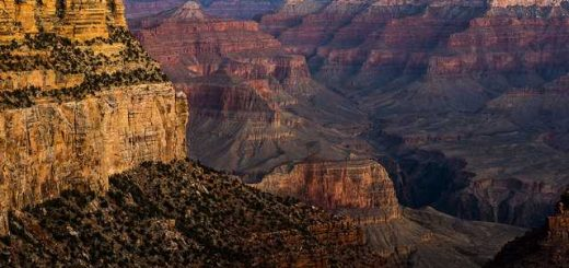 Grand Canyon near El Tovar
